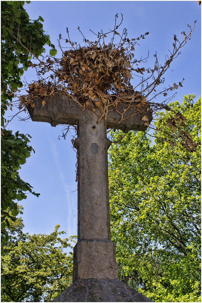 Westfriedhof - Aachen